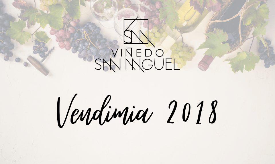 Wine Harvest Festival 2018