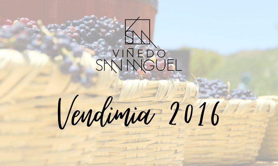Wine Harvest Festival 2016